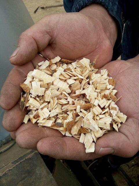 木材木屑 (5)