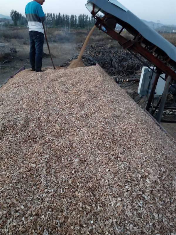木材木屑 (11)